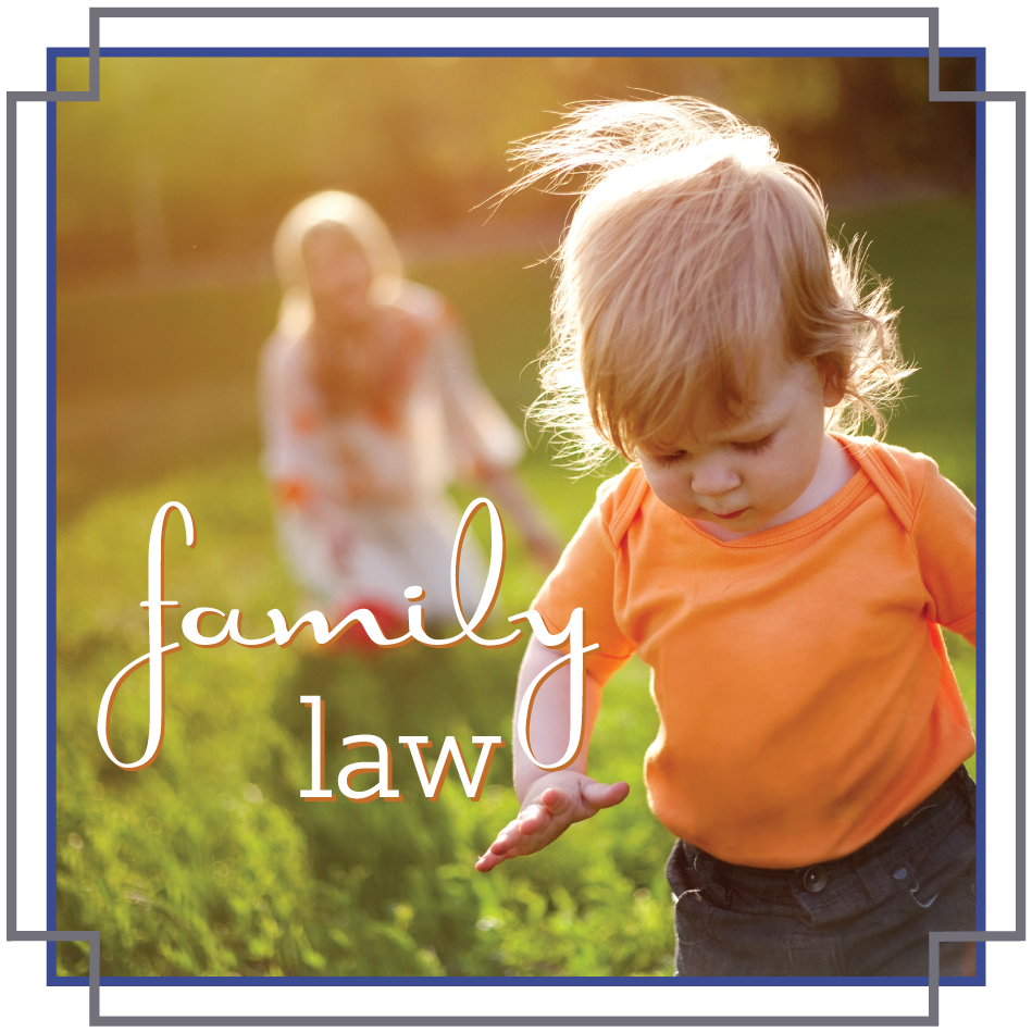 Family Law: Divorce, Alimony, Custody, Child Support, Removal
